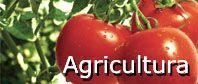 Medidores de pH y EC para agricultura